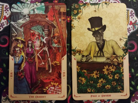 Two Tarot cards: The Chariot- VII and Page of Swords from the Santa Muerte Tarot deck